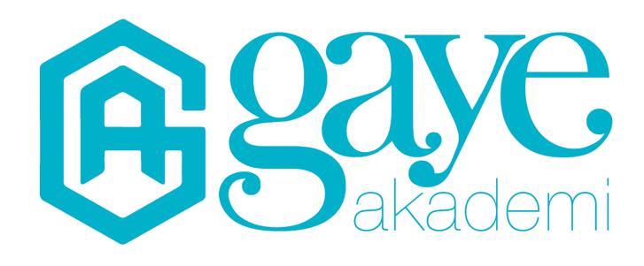 Gaye Akademi – Yeni şeyler söylemek için! Logo