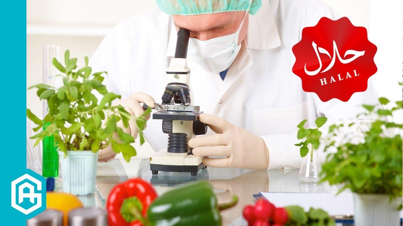 Helal Sertifikalı Ürünlerin Faydaları Nelerdir? | Helal Gıda #14
